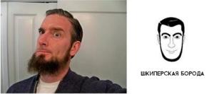Шкиперская борода фото
