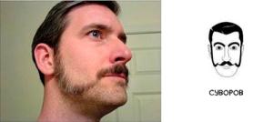 Суворовская борода фото