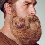 Почему борода растет неравномерно и как с этим бороться