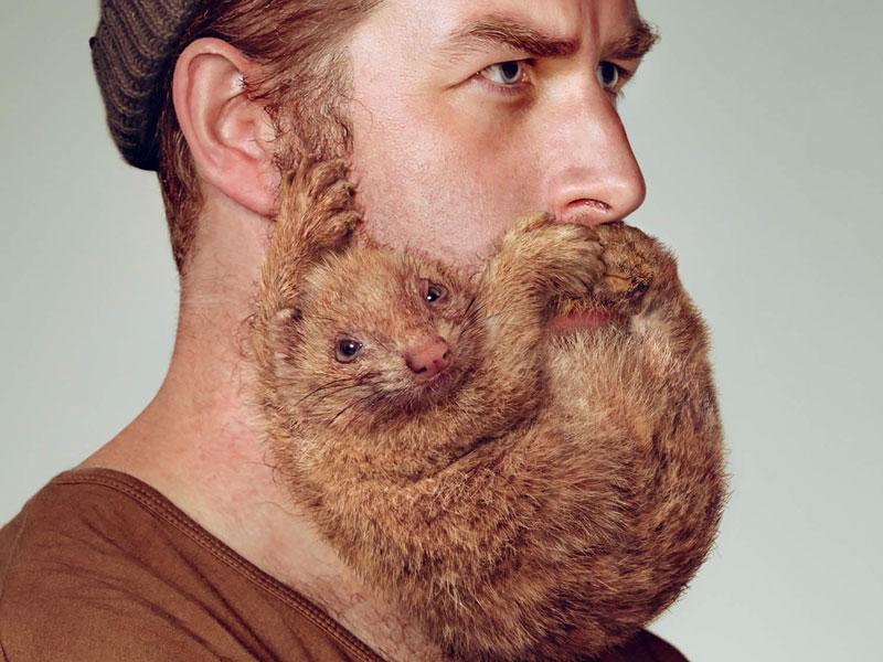 Почему не растет борода и как это исправить